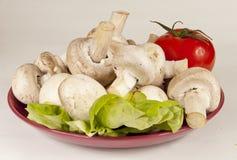 Fresh mushrooms and a tomato Stock Photo