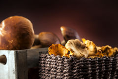 Fresh mushrooms in wood box Royalty Free Stock Photography