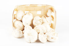 Fresh mushrooms in a wooden box Stock Photo