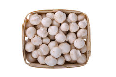 Fresh mushrooms in a wooden box on white Stock Images
