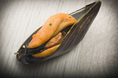 Fresh mussel cooked. Close up on the white plate Royalty Free Stock Photography