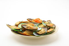 Fresh mussel on white background . Royalty Free Stock Photo