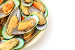 Fresh mussel on white background . Royalty Free Stock Images