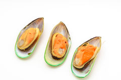 Fresh mussel on white background . Stock Photo