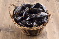 Fresh mussel in a wicker basket Stock Photo