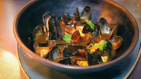 Fresh mussels bowl seafood cuisine restaurant. Delicious mussels bowl seafood cuisine restaurant stock video footage