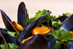 Fresh mussels braised in white wine Stock Photography