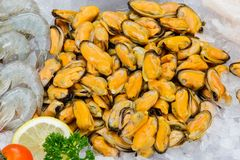 Fresh mussels on Ice seafood Stock Photo