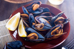 Fresh mussels with lemon Stock Images
