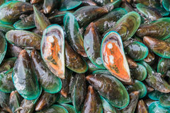 Fresh mussels at the market Stock Image