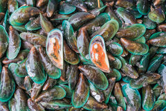 Fresh mussels at the market Stock Photos