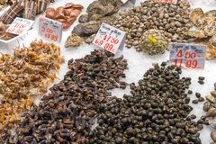 Fresh mussels and seafood for sale. At a market in Madrid, Spain Royalty Free Stock Images