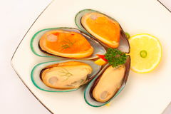 Fresh mussels. With shell on white plate Royalty Free Stock Photos