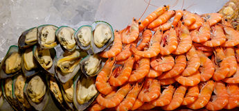 Fresh mussels and Shrimp Stock Images