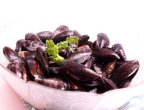 Fresh mussels Stock Photo