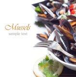 Fresh mussels Stock Photo