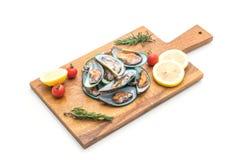 Fresh mussels on white background. Fresh mussels isolated on white background Royalty Free Stock Image