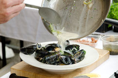 Fresh mussels with a white wine and cream sauce Stock Photography
