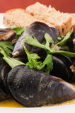 Fresh mussels in white wine Royalty Free Stock Image