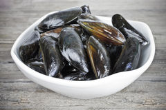 Fresh mussels Royalty Free Stock Photography