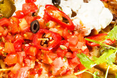 Fresh nachos and vegetable salad with meat Royalty Free Stock Photo