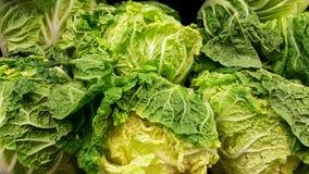 Fresh Napa Cabbage. Group of fresh Napa Cabbage stock image
