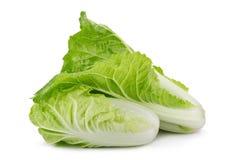 Fresh napa cabbage on white background. Fresh napa cabbage on white background royalty free stock photos