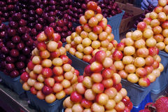 Fresh Napoleon Cherries in Vancouver's Grandville Island Market Royalty Free Stock Photography