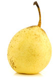 Fresh nashi pear Stock Images