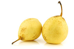 Fresh nashi pears Royalty Free Stock Photo