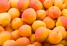 Fresh natural apricot background Stock Images