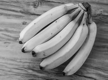 Fresh natural banana bunch Black and white style Stock Images