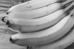 Fresh natural banana bunch Black and white style Royalty Free Stock Photos