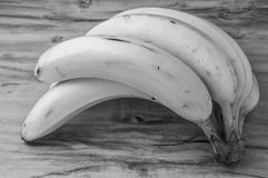 Fresh natural banana bunch Black and white style. Fresh and natural banana Tabasco on wood table, black and white style Royalty Free Stock Photo
