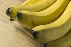 Fresh natural banana bunch Stock Photography