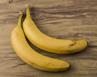 Fresh natural banana bunch stock photography