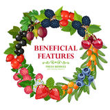 Fresh Natural Berries Wreath Decorative Frame stock illustration