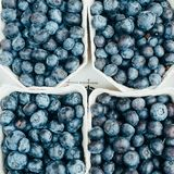 Fresh, natural blueberries in four boxes. Fresh, natural blueberries, which are packed in four boxes Royalty Free Stock Photo