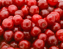 Fresh natural cherry background Royalty Free Stock Image