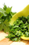 Fresh, natural and chopped parsley on wooden cutting board Stock Photography