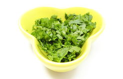 Fresh and natural chopped parsley in yellow dish. White background Royalty Free Stock Image