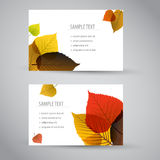 Fresh natural fall  vertical banners or cards Royalty Free Stock Photo