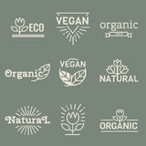 Fresh And Natural Food Royalty Free Stock Images