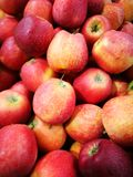Apple at Farmer`s Market Royalty Free Stock Images