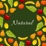 Fresh natural fruits vector poster Royalty Free Stock Photos