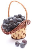 Fresh and natural grapes in wicker basket on white background Royalty Free Stock Photography