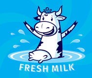 Fresh natural milk Stock Images