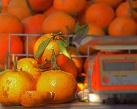 Fresh Natural Oranges Stock Photography