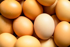 Fresh natural raw chicken eggs Royalty Free Stock Photos