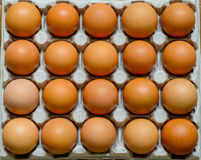 Fresh natural raw chicken eggs Royalty Free Stock Photography